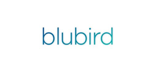 Blubird nv